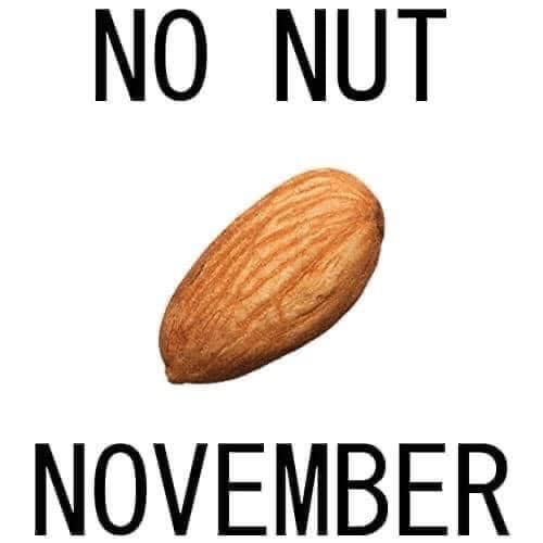 No nut november, nnn