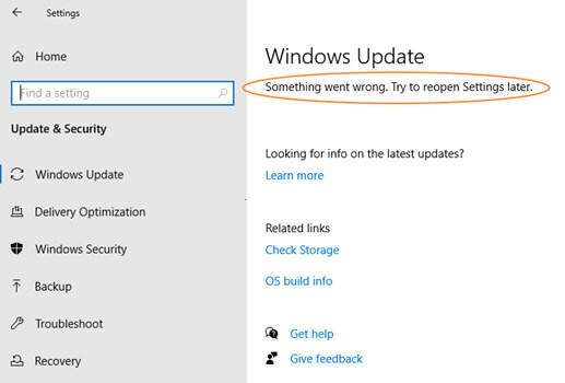 Something Went Wrong window 10 update