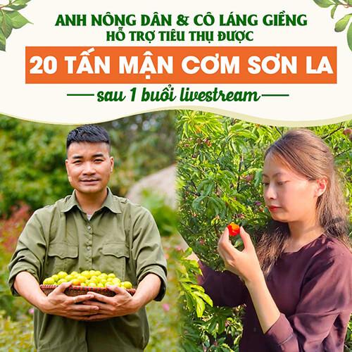 Anh Nông Dân tiêu thụ mận Sơn La