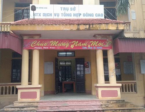 Rau sạch tại Hà Nội