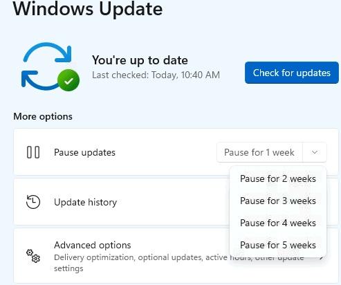 Tạm dừng cập nhật windows 11